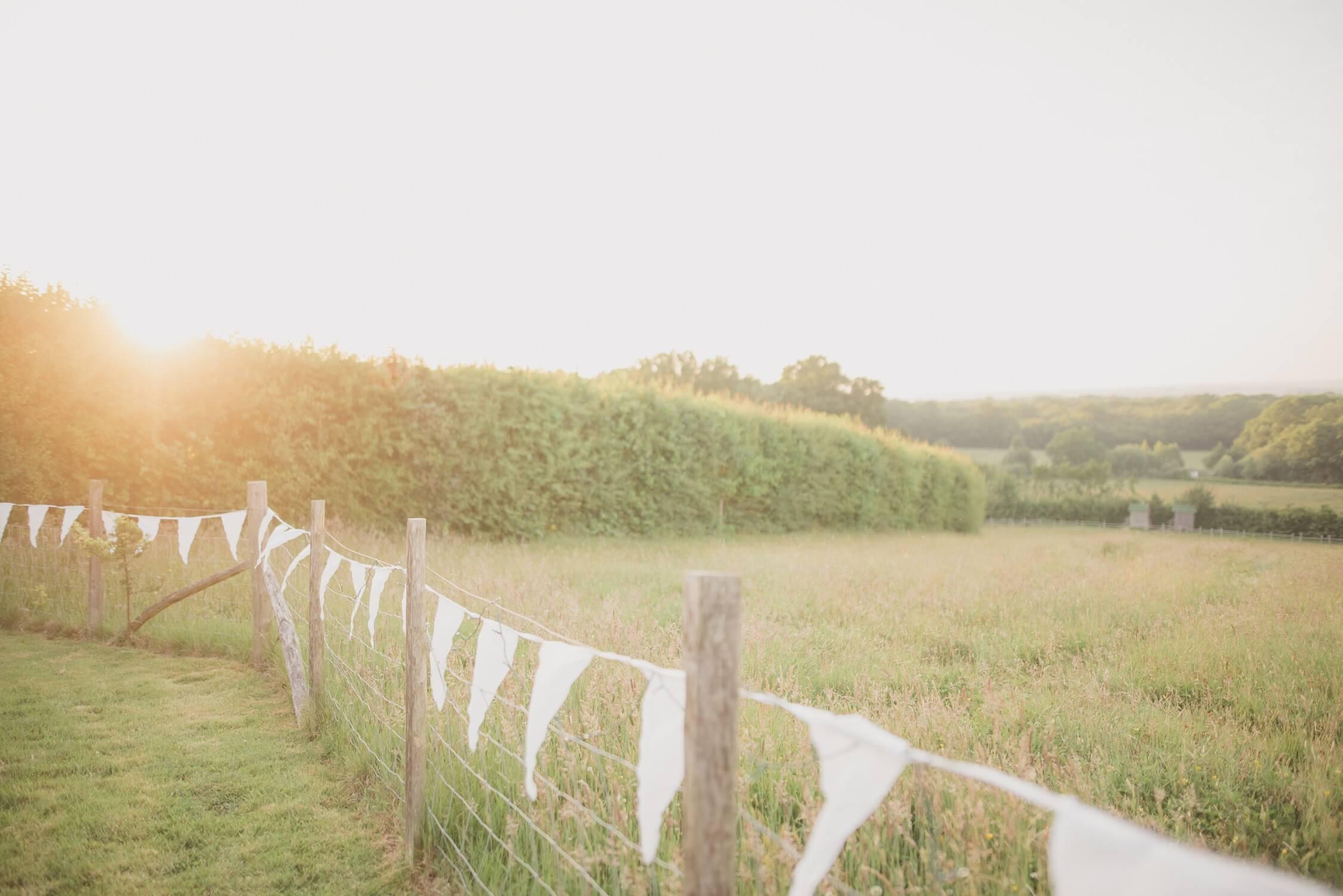 Swallowtail Hill farm - Surrounding fields
