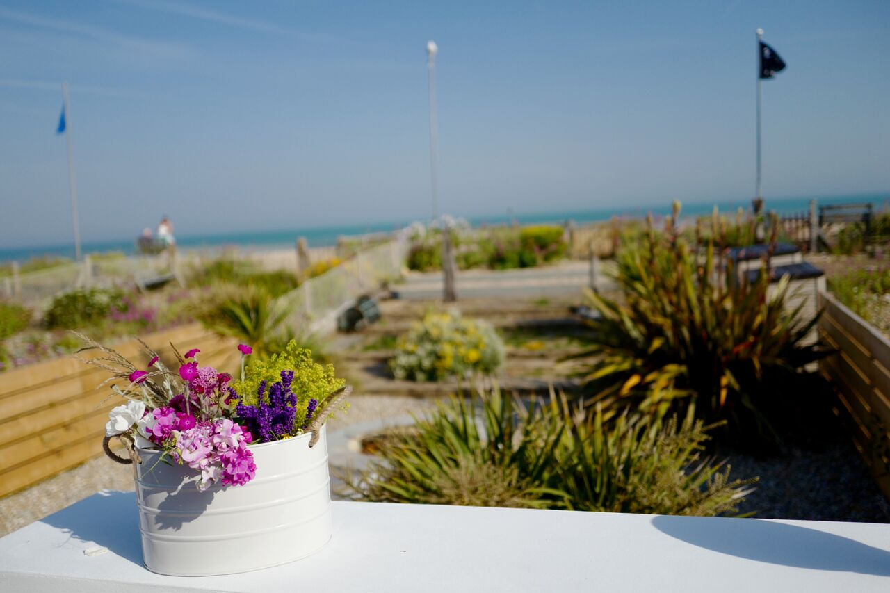 The Beach Hive, Pevensey Bay, Sussex Beach Fronted Holiday Cottage