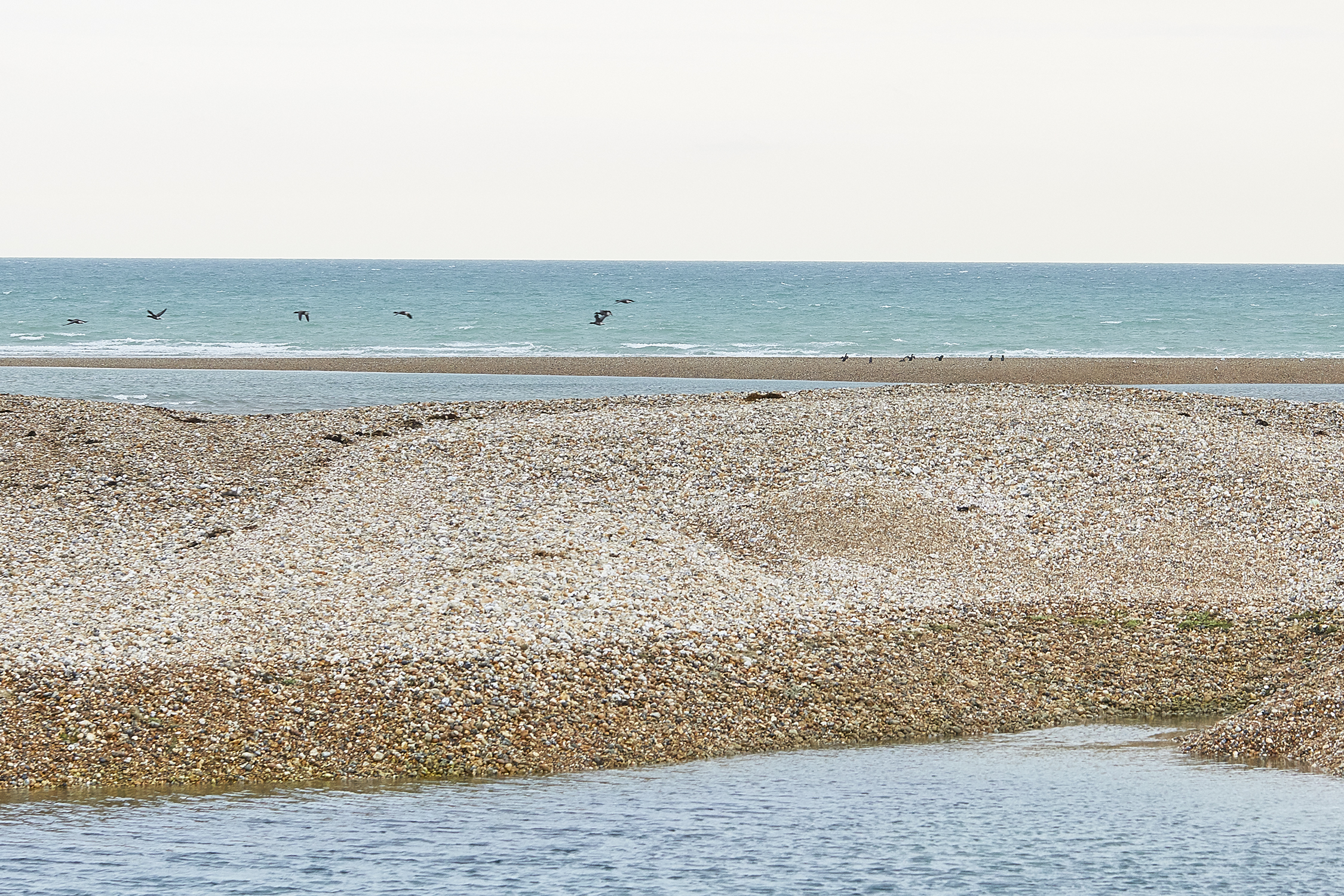 Pagham Beach - The Bolthole opens directly onto the beach