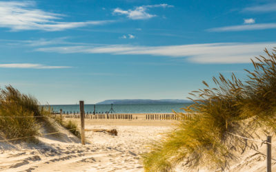 The Best Beaches in Sussex