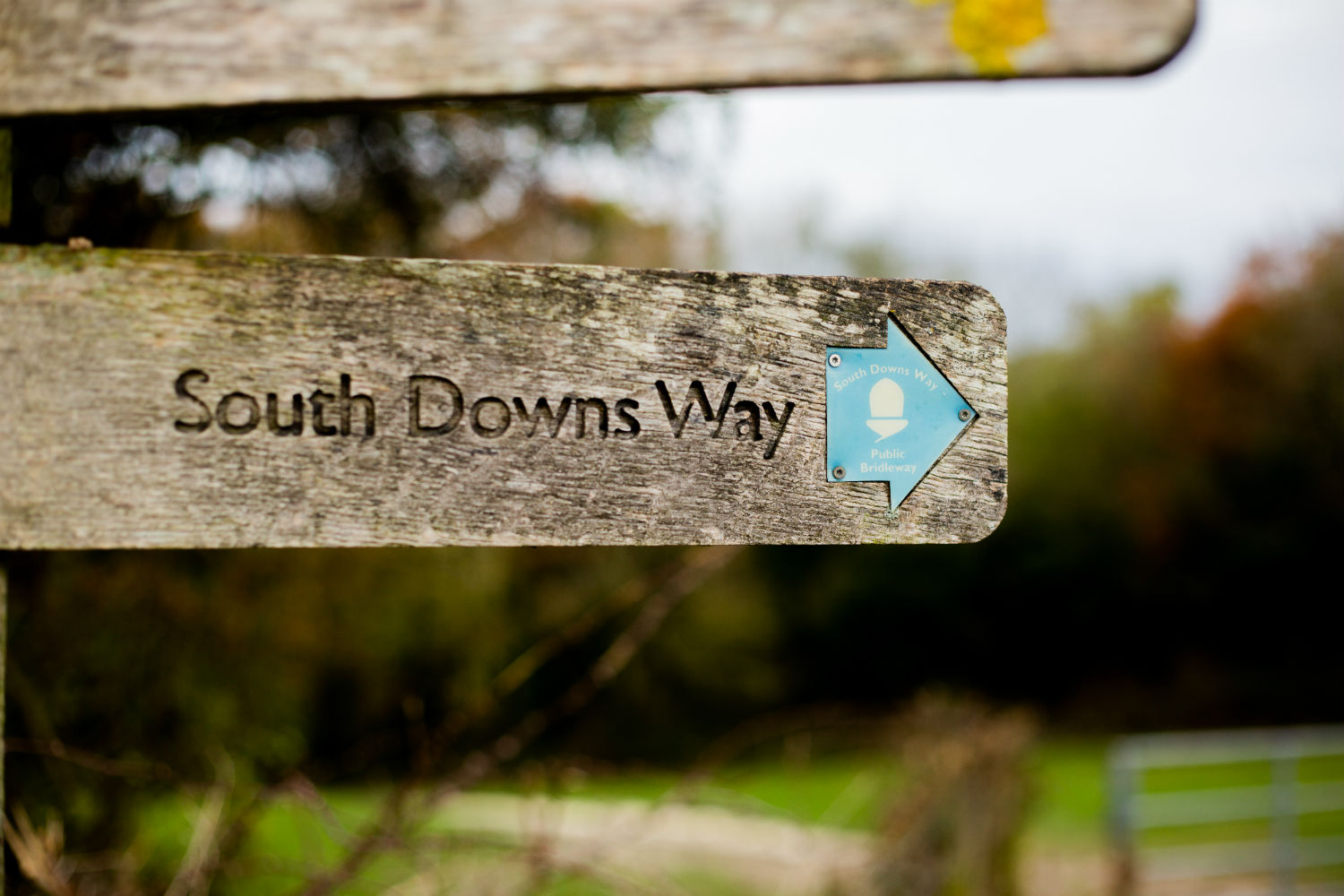 South Downs Way is on the doorstep