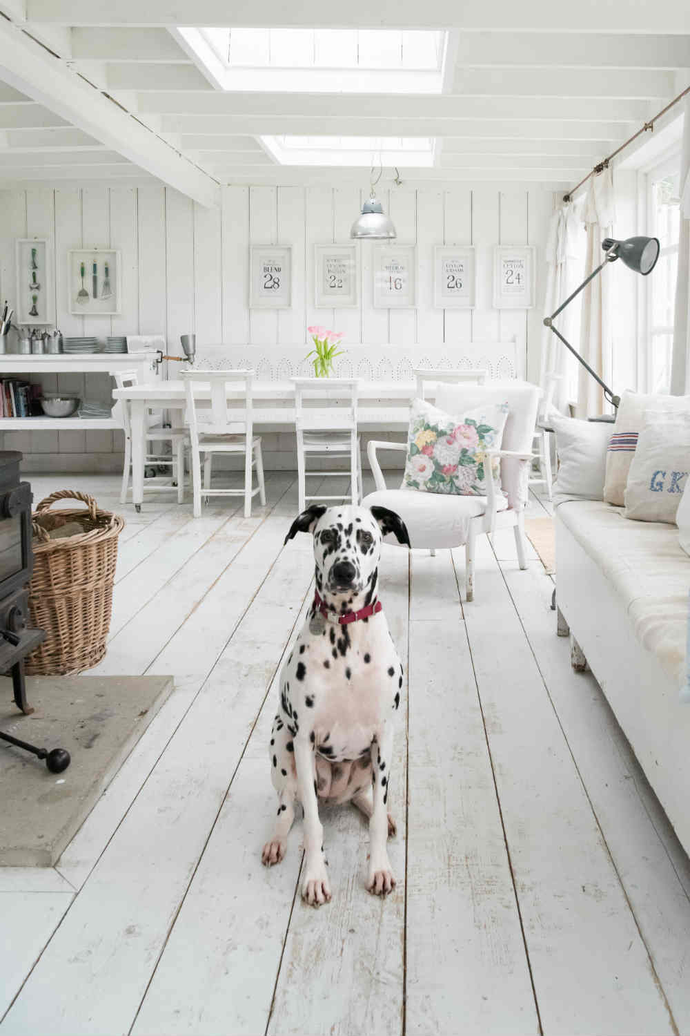 Bring your dog to Camber Sands Cottage