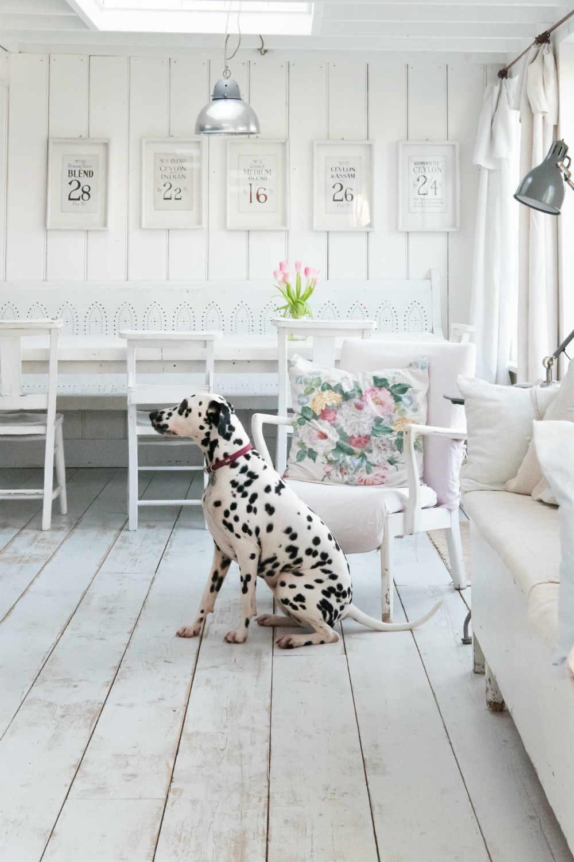 Camber Sands Cottage - dog friendly