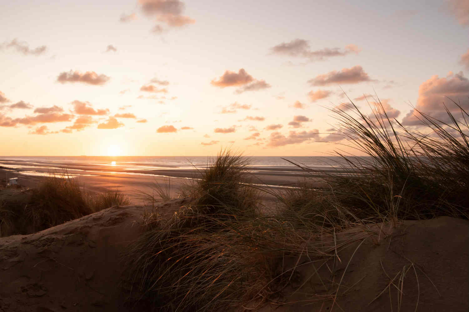 Humphrey and Grace - sunrise at Camber Sands