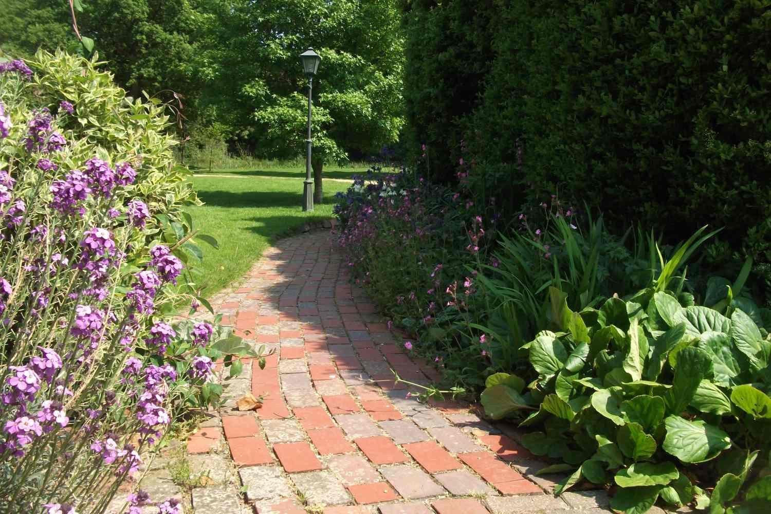 Pathway in the grounds