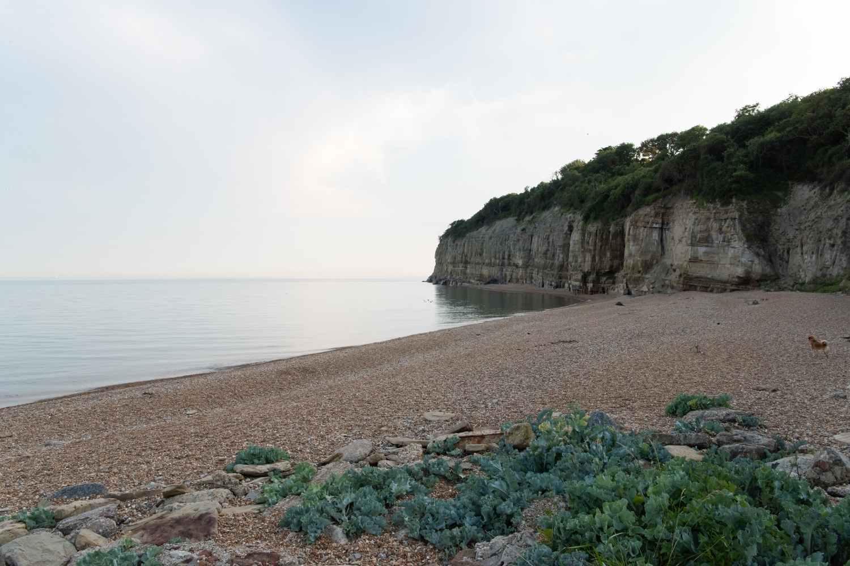 Stunning beach at Pett Level